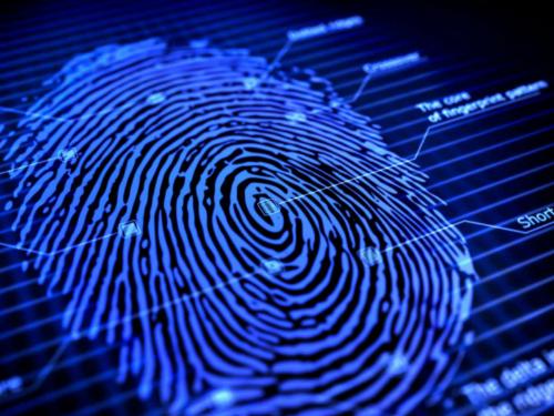 Image of finger print analyis